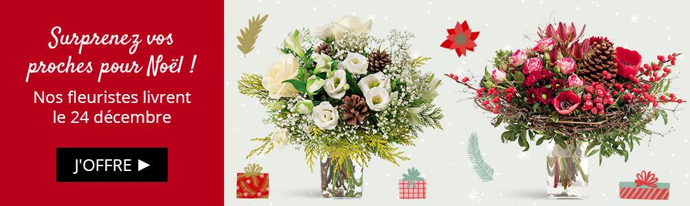 Noël - Nos fleuristes livrent aussi pour Noël !